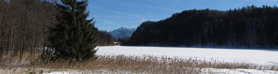 Winter am Alatsee